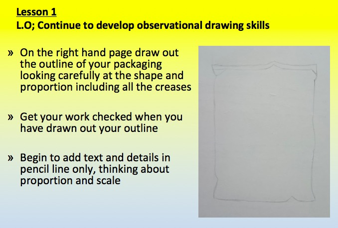 observational drawing scheme of work - how to draw lesson