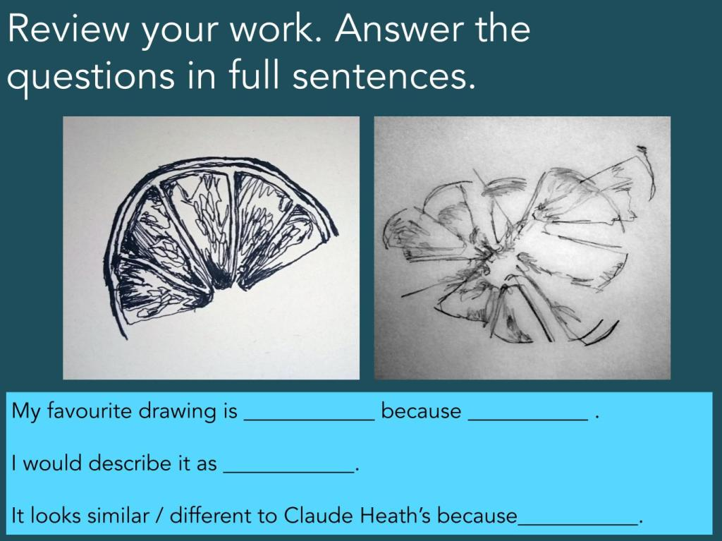 Continuous line drawing examples art lesson review