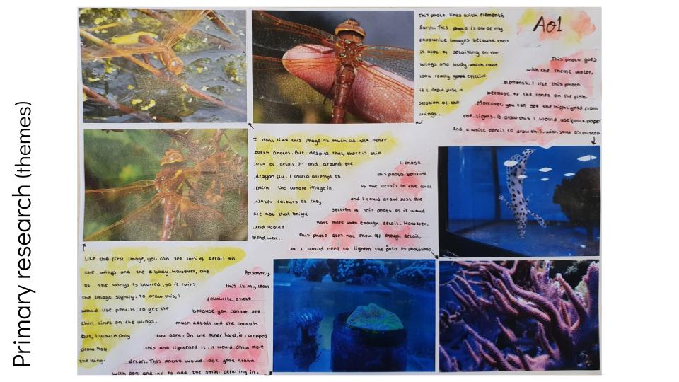 GCSE Art Grade 9 Primary Research Examples