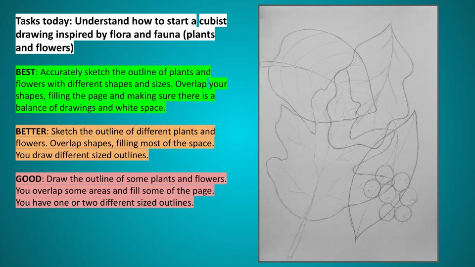 Plants and flowers art scheme of work KS3
