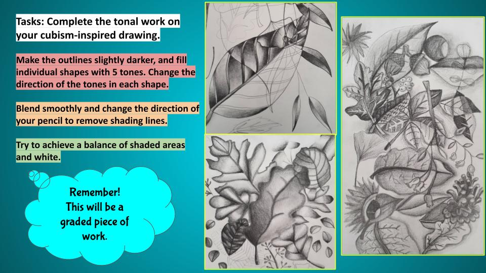 Cubism art project plants and flowers drawings.
